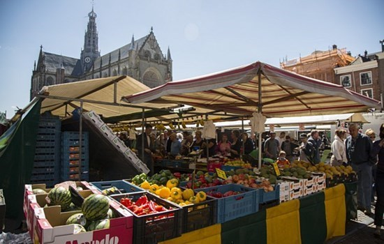 Weekly market in De Pijp district in Amsterdam, Holland