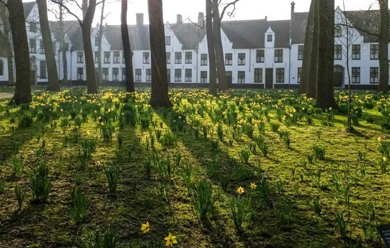 The ancient beguinage is still in use today, Bruges, Belgium